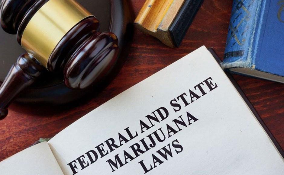 Why Employers Need a Workplace Marijuana Policy