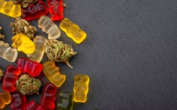 Cannabis Edibles: What You Need To Know