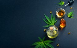 5 Cannabis Myths Debunked: What You Need To Know