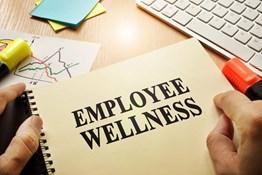 Wellness Program ROI:  Are Wellness Programs a Good Investment?