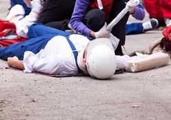 What is the Occupational Injury and Illness Classification System (OIICS) and how is it used to characterize occupational illness and injury incidents?