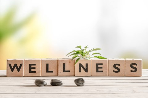 Even the best workplace wellness program won't be effective if employee aren't interested — luckily, there are a few easy ways to increase...
