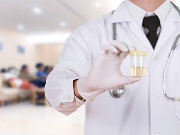The Department of Transportation (DOT) has very specific guidelines that must be followed throughout the drug testing process. Sending a urine specimen to the laboratory for testing is one part of the process.The following...