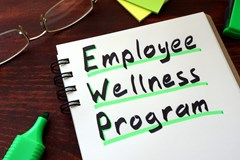 How long until a company sees a return on investment when implementing a wellness program?