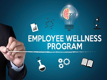 What are the benefits to my company to start a wellness program?