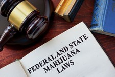 4 Things Employers Can Do to Prepare for Marijuana Legalization