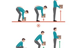 Movement Education as Part of a Complete Workplace Ergonomics Plan