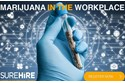 Complimentary Webinar | Managing Marijuana in Your Workplace | November 6, 2018 11:00 AM EST